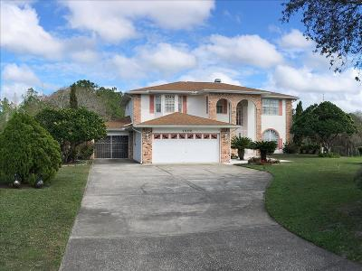 Saint Cloud FL Single Family Home For Sale: $565,000