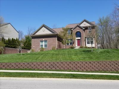Brownsburg IN Single Family Home For Sale: $375,000