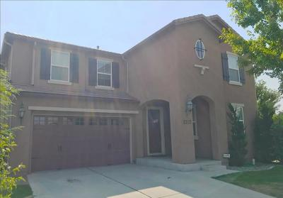 Sparks NV Single Family Home For Sale: $599,000