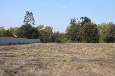 Oakdale CA Residential Lots & Land For Sale: $325,000