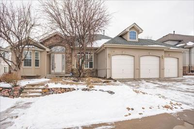 Lakewood CO Single Family Home For Sale: $745,000