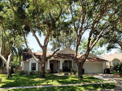 Palm Harbor FL Single Family Home Pending: $335,000