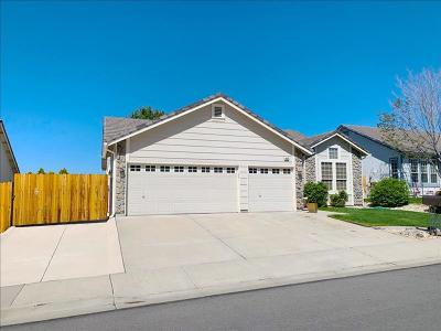 Sparks NV Single Family Home For Sale: $424,900