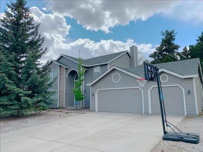 Reno NV Single Family Home For Sale: $549,999