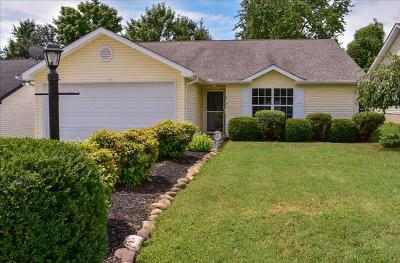 Single Family Home For Sale: 9243 Wells Station