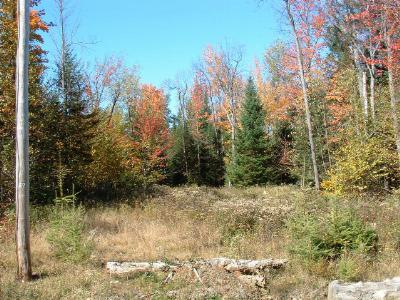 Residential Lots & Land For Sale: 168 Main Street