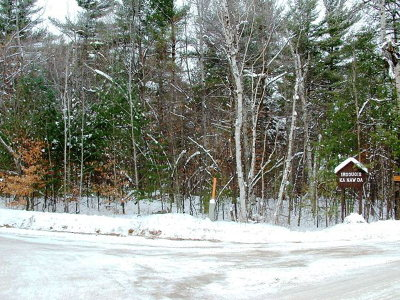 Essex County Residential Lots & Land For Sale: 102 Sequoia Mountain Ln