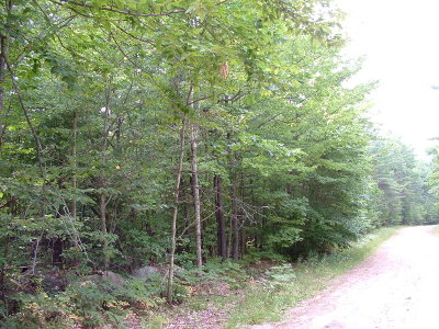 Essex County Residential Lots & Land For Sale: Lot 134 Mohawk Trl.