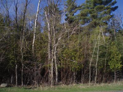 Residential Lots & Land For Sale: Lot #7 Memorial Highway 431