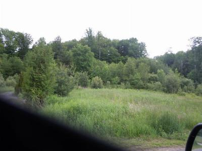 Saranac Lake NY Residential Lots & Land For Sale: $52,900