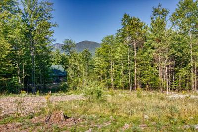 Residential Lots & Land For Sale: 12 Outlook Lane