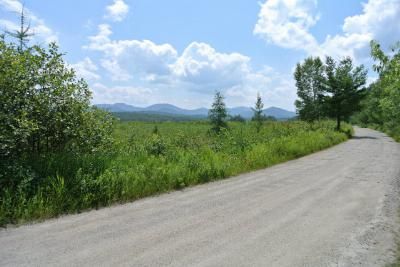 Saranac Lake NY Residential Lots & Land For Sale: $125,000