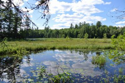 Saranac Lake NY Residential Lots & Land For Sale: $70,000