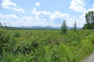 Saranac Lake NY Residential Lots & Land For Sale: $58,000