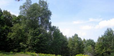 Saranac Lake NY Lots and Land For Sale: $55,000