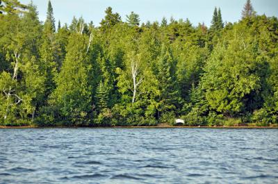 Saranac Lake NY Residential Lots & Land For Sale: $230,000