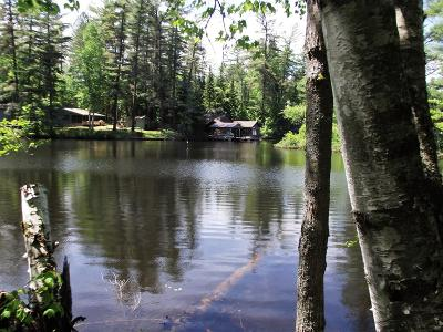 Rainbow Lake NY Residential Lots & Land For Sale: $75,000