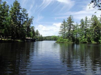 Rainbow Lake NY Residential Lots & Land For Sale: $100,000