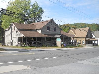 Keene NY Commercial For Sale: $325,000
