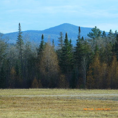 Essex County Residential Lots & Land For Sale: 16 Thunderbird Drive
