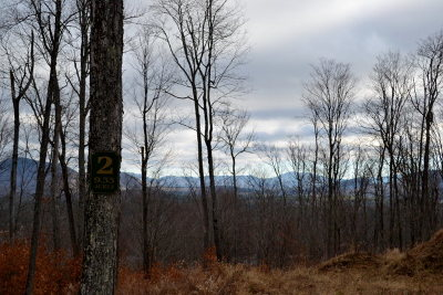 Saranac Lake Residential Lots & Land For Sale: Lot 2 Hawk Ridge Sub