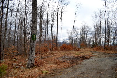 Saranac Lake Residential Lots & Land For Sale: Lot 1 Hawk Ridge Subdivision