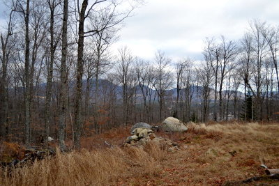 Saranac Lake NY Residential Lots & Land For Sale: $80,000