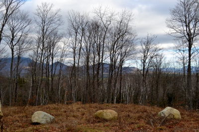 Saranac Lake Residential Lots & Land For Sale: Lot 8 Hawk Ridge Subdivision