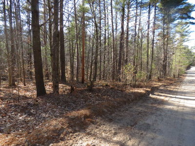 Essex County Residential Lots & Land For Sale: 42 Fern Lane