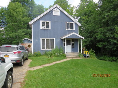Saranac Lake Single Family Home For Sale: 60 Algonquin Ave