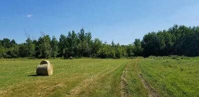 Franklin County Residential Lots & Land For Sale: 384 Seymour