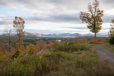 Saranac Lake NY Residential Lots & Land For Sale: $55,000