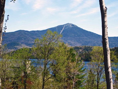 Lake Placid, Saranac Lake, Tupper Lake Single Family Home For Sale: 152 Lodge Way Bluff Townhome