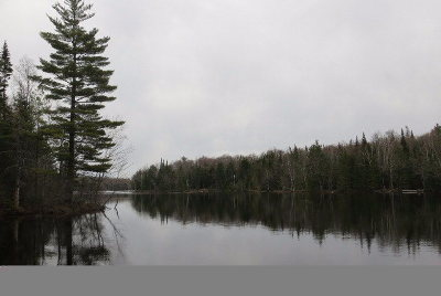 Clinton County, Essex County, Franklin County, Hamilton County, St Lawrence County Residential Lots & Land For Sale: 179 Setting Pole Dam Rd