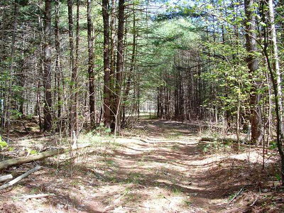 Residential Lots & Land For Sale: Lot 1 Nys Route 86