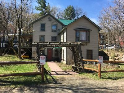 Saranac Lake Commercial For Sale: 144 Broadway