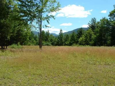 Essex County Residential Lots & Land For Sale: 76 Mountain Meadows Way