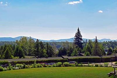 Elizabethtown, Jay, Keene, Keene Valley, Lake Placid, Saranac Lake, Westport, Wilmington, Loon Lake, Rainbow Lake, Tupper Lake Condo/Townhouse For Sale: 351 Whiteface Inn Rd Hillside Condo # 9