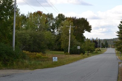 Saranac Lake NY Residential Lots & Land For Sale: $60,000