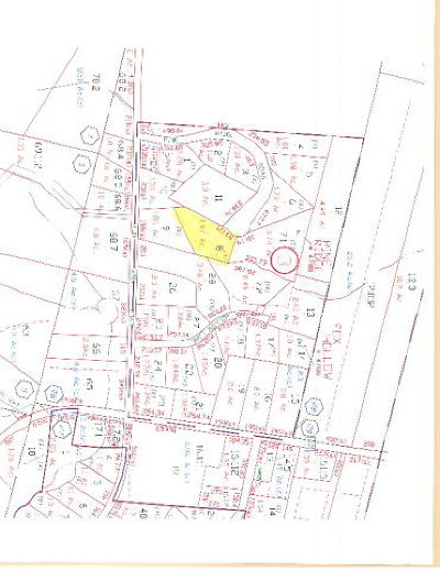 Residential Lots & Land For Sale: 58 Pine Ridge Lane