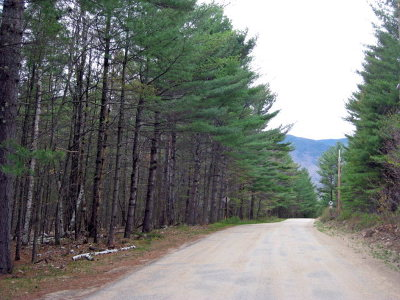 Residential Lots & Land For Sale: Quaker Mountain Road
