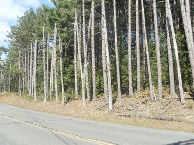 Ray Brook NY Residential Lots & Land For Sale: $35,000