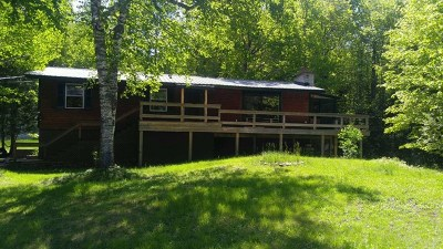 Single Family Home For Sale: 38 Bass Lake Rd