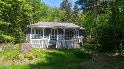 Loon Lake NY Single Family Home For Sale: $109,000