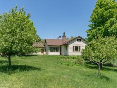 Lake Placid Single Family Home For Sale: 589 Averyville