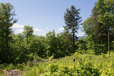 Residential Lots & Land For Sale: 62 Dewey Mt. Road