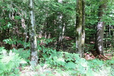 Essex County Residential Lots & Land For Sale: Ridge Top Ln