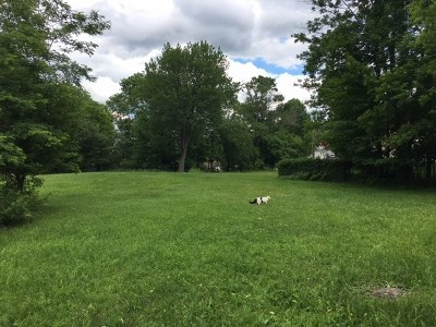 Residential Lots & Land For Sale: 50 McClelland Street
