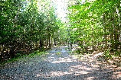Wilmington Residential Lots & Land For Sale: Whiteface Memorial Highway