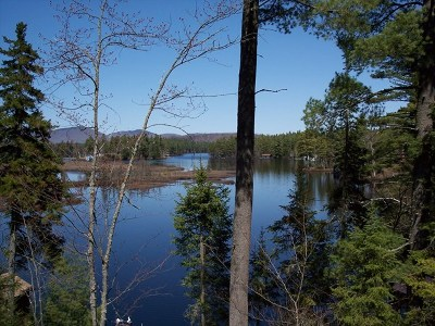 Rainbow Lake NY Residential Lots & Land For Sale: $59,500